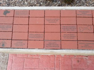 Courtyard Bricks