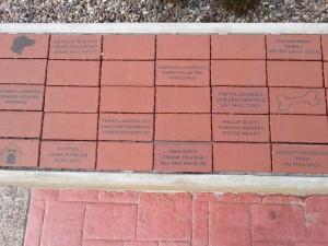 Courtyard Bricks
