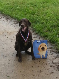 First Place Dog Winner - Fast & Furry 5K 2013