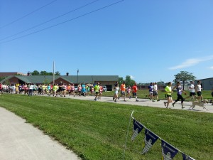 And they're off!  Fast & Furry 5K 2014