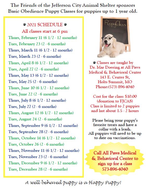 2021 Puppy Classes