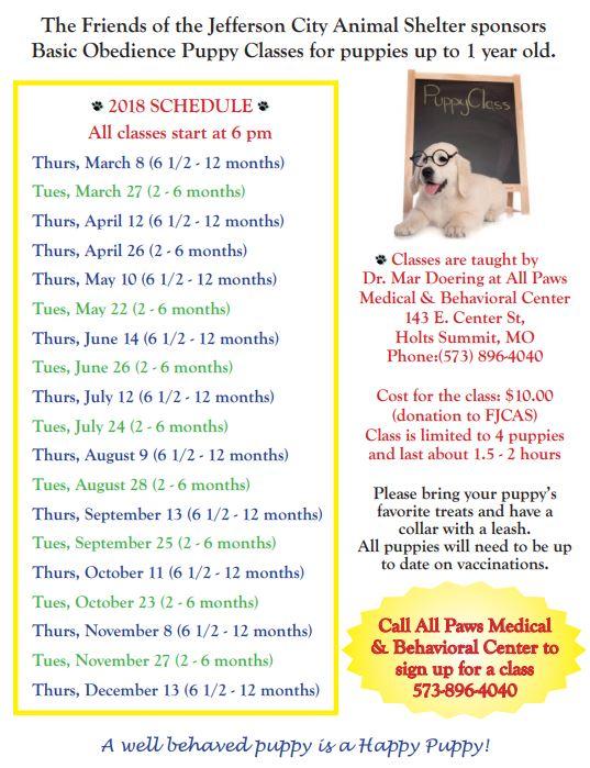 Puppy Classes 2018